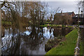 SJ6180 : Reflections in the pond at Higher Whitley by Ian Greig