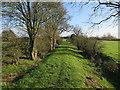 TL3974 : Bridleway to Earith Bulwark by Hugh Venables