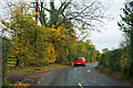 TQ4360 : Autumn hedge, Luxted Road by Robin Webster