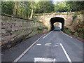 SJ4062 : Rake Lane and Chester Approach bridge by John S Turner