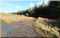 NX2660 : Track to Blairderry Farm by Billy McCrorie