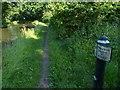 SJ6175 : Trent & Mersey Canal Milepost near Little Leigh by Mat Fascione