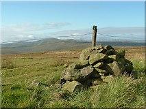 NS6504 : Blacklorg Hill (summit cairn) by Raibeart MacAoidh