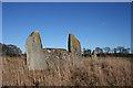 NJ7112 : Castle Fraser Recumbent Stone Circle (3) by Anne Burgess