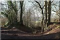 ST7361 : Tracks from Combe Hay Lane by Derek Harper
