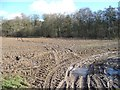 SE3078 : Muddy field entrance west of Howgrave Wood by Christine Johnstone