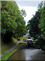 SJ6542 : Audlem Locks in Cheshire by Roger  Kidd
