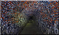 NZ2564 : Victoria Tunnel : Week 8