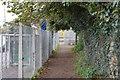 SX5053 : West Devon Way by N Chadwick