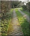 ST7559 : Path, Middle Twinhoe by Derek Harper