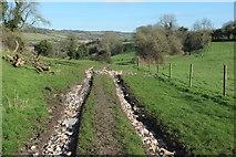 ST7258 : Footpath to the Cam Brook valley by Derek Harper