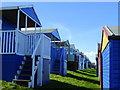 TR1167 : Terraces of beach huts on Tankerton Slopes : Week 9