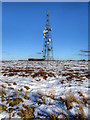 SD6614 : Communications Mast on Winter Hill by David Dixon