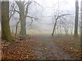 TL0528 : In Sundon Hills Country Park by Robin Webster