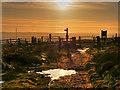 SD6512 : Almost Home by David Dixon