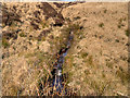 SD6613 : Stream on Smithills Moor by David Dixon