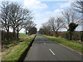 TL1541 : The road to Ireland by David Purchase