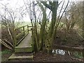 SJ7663 : Footbridge over Sanderson's Brook by Stephen Craven