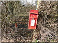 TQ9241 : Sloping Post Box near Tuesnoad Lane by David Hillas
