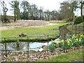SJ7683 : Semi dried-up pond by Anthony O'Neil