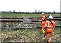 SJ7782 : Open rail crossing by Anthony O'Neil