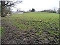 SE3304 : Hillside south of Rob Royd by Christine Johnstone