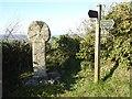 SX0563 : Celtic cross by Philip Halling