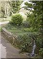 ST7069 : North Stoke pond by Neil Owen