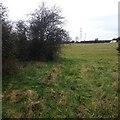 TL1562 : Path towards High Wood, Hail Weston by Dave Thompson