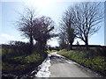 TL0129 : Long Lane  by JThomas
