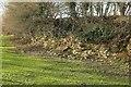 ST7356 : Rock exposure, Wellow Book valley by Derek Harper