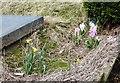 SJ9394 : Graveyard flowers by Gerald England