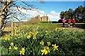 NS2310 : Springtime at Culzean : Week 15
