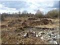 N1521 : Scrub on the peatland near Turraun by Oliver Dixon