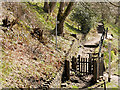 SD7914 : Summerseat, Path and Steps from Chest Wheel Crossing by David Dixon