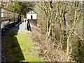 SN7078 : Vale of Rheidol Railway, Rheidol Falls Halt by David Dixon