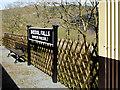 SN7078 : Rheilffordd Cwm Rheidol, Rheidol Falls Halt by David Dixon