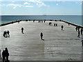 TQ8108 : People on Hastings Pier : Week 17