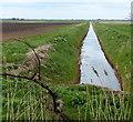 TF3001 : Drain crossing Upper Knarr Fen by Mat Fascione