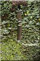 TQ3870 : Boundary marker on the Green Chain walk, Beckenham Place Park by Christopher Hilton