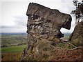 SE4594 : Hanging Stone, Thimbleby Bank by Mick Garratt