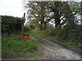 TG3612 : Farm track off Burlingham Road by JThomas