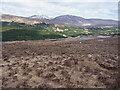 NN0697 : Heathery hillside above the floor of Glen Kingie by Richard Law