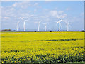 TQ9520 : Rape field and Little Cheyne Court Wind Farm by Oast House Archive