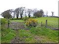H5557 : Tycanny Hill, Tycanny by Kenneth  Allen