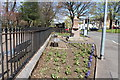 NS3453 : Garden, Town Centre Beith by Billy McCrorie