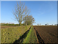 TL6656 : Stour Valley Path by Hugh Venables