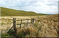 NS3201 : By Glenmartin Burn : Week 20