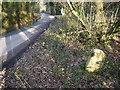 SX0555 : Boundary Stone Nanscawen by Nigel Mykura