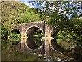 SN0717 : Llawhaden Bridge : Week 20